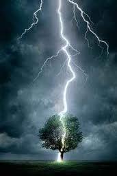 árvore e raio